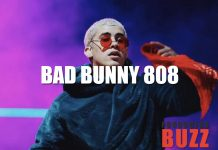 Bad Bunny 808 Drum Kit