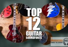 Download a selection of top 12 Free Guitar soundfonts which can be used for any genre of music production. Contains both acoustic and electric soundfonts.