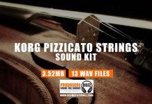 Korg Pizzicato Strings | Korg Pizzicato Sample Loop Sounds