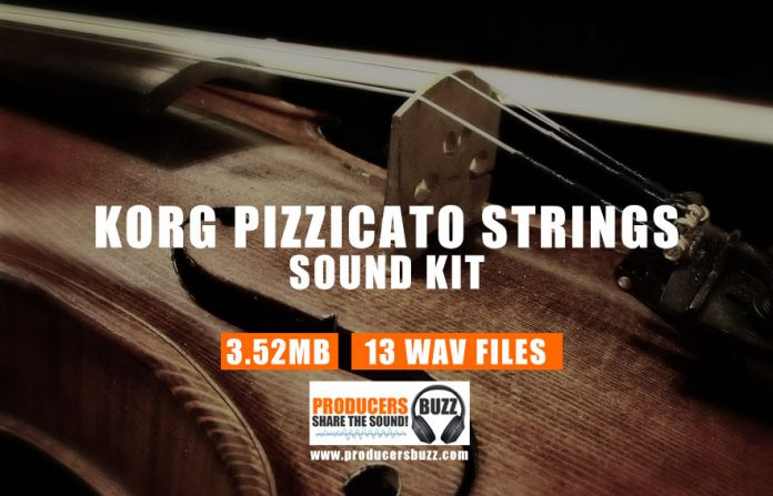 Korg Pizzicato Strings | Korg Pizzicato Sample Loop Sounds