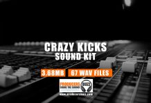 Crazy Kicks Drum Sample Kit | Hip-Hop & Trap Kicks
