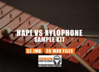 Goldbaby Hapi vs Xylophone Drum Sound Kit (Free Sound Samples)