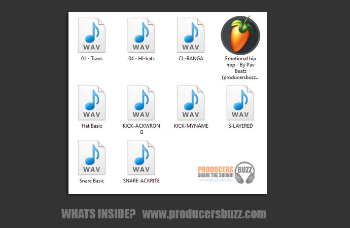 What's inside this FL Studio 20 Project File?