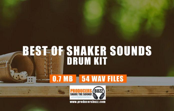 Shaker Sounds Drum Kit