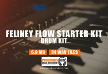 Feliney Flow drum samples loops