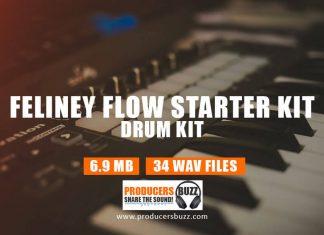 Feliney Flow drum samples loops
