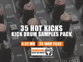 35 Kick Drum Samples